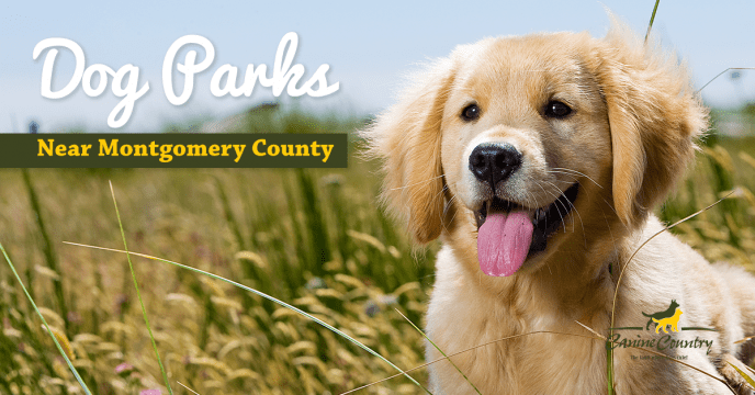 dog parks near montgomery county