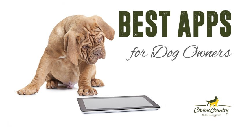 Best Apps for Dog Owners.
